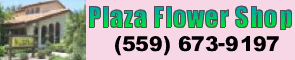 Plaza Flowers 295x60